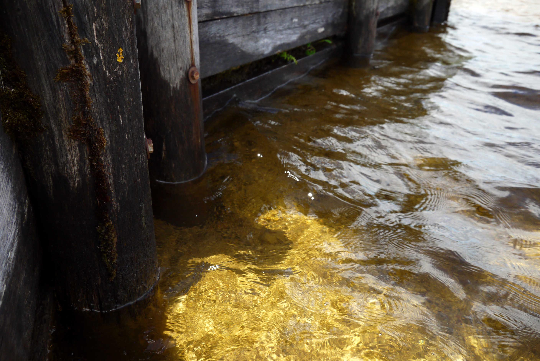 Bernsteinfarbenes Wasser Kirchsee