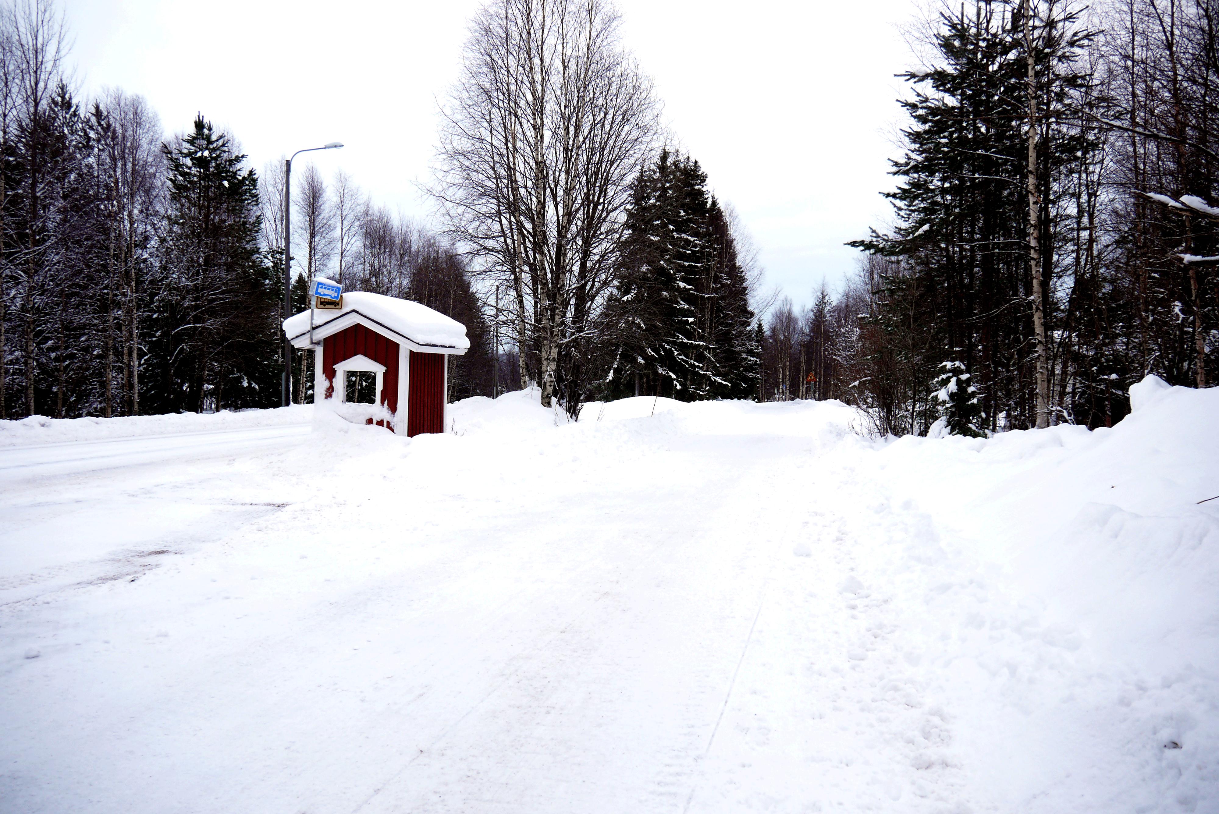 Straße in Lappland