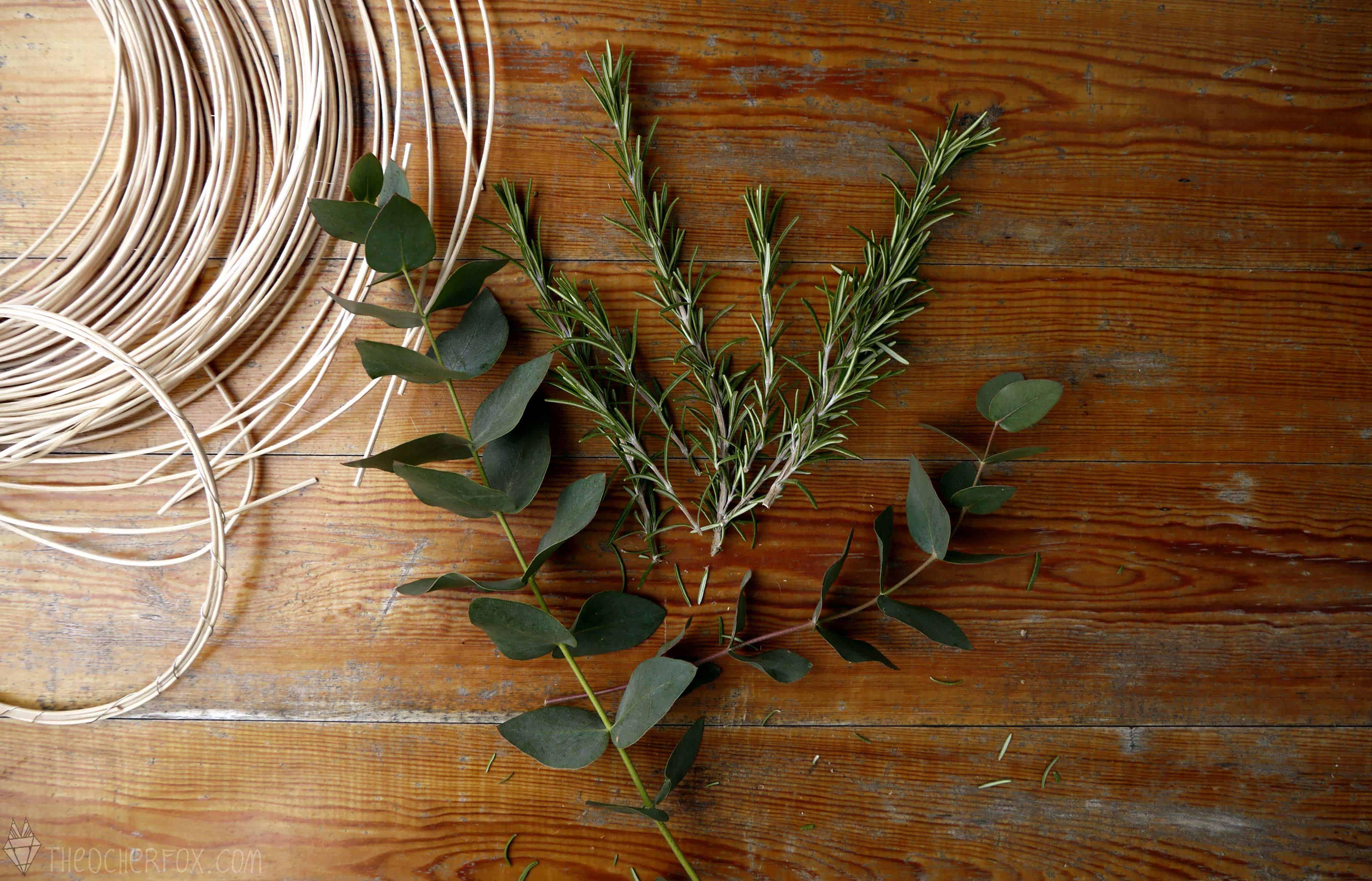Eukalyptus, Rosmarin, Oliven