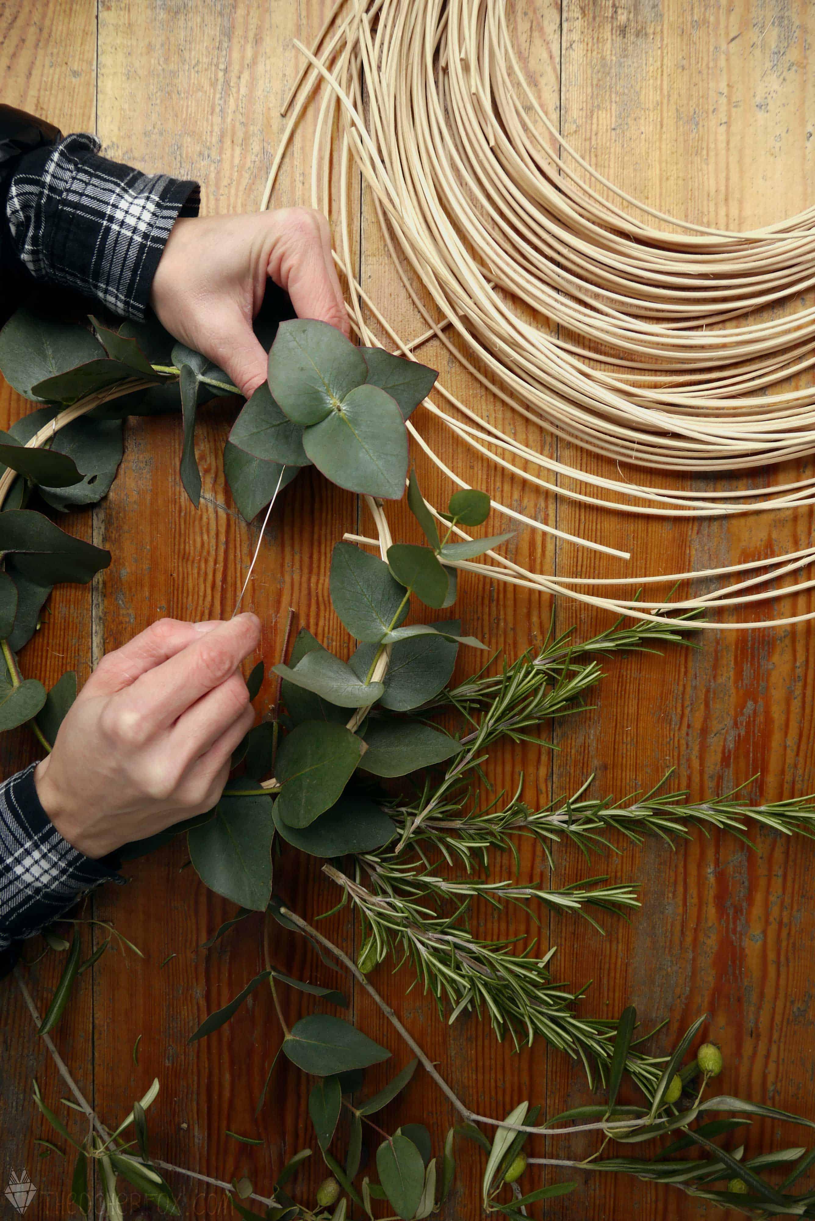 Eukalyptus mit etwas Draht am Kranz fixieren